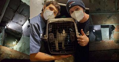 Portland Branch Pet Rescue