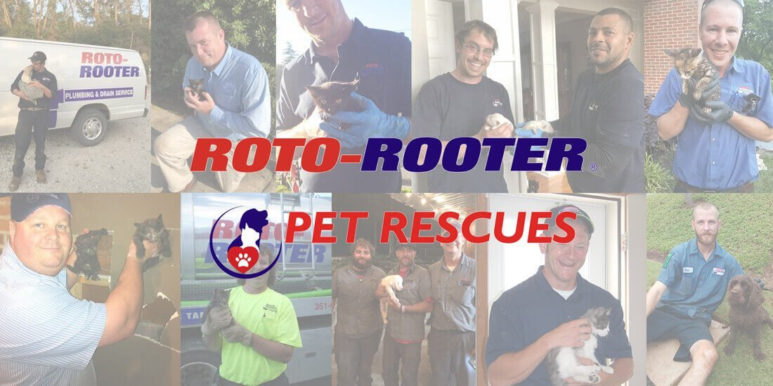 Roto-Rooter Pet Rescues