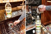 clean interior and door gasket with vinegar